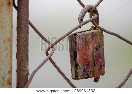 A Rusty Padlock Hanging From A Fence