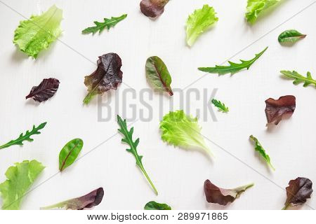 Green Salad Leaves On A White Background. Pattern With Lettuce Leaves. Background Design With Leaves