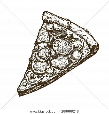 Hand Drawn Slice Vector & Photo (Free Trial) | Bigstock
