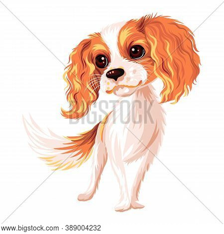 Vector Cute Smiling Dog Cavalier King Charles Spaniel Breed