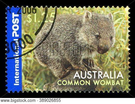 Australia - Circa 2006: A Stamp From Australia Shows Image Of A Common Wombat (vombatus Ursinus), Ci