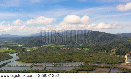 Tropical Landscape: A Town At The Foot Of Mountains And Hills Covered With Tropical Vegetation And F