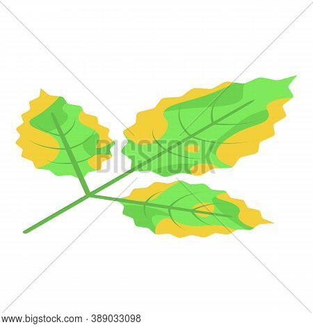 Fallen Leaf Icon. Isometric Of Fallen Leaf Vector Icon For Web Design Isolated On White Background