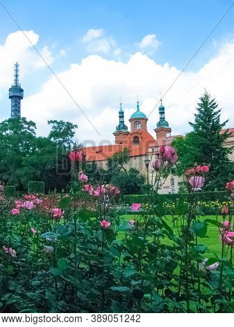 The Part Of The Prague Castle Complex And Flowers At Sunny Day