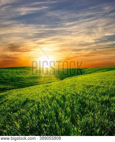 sunset on a green grass field of a scenic landscape of Sicily agriculture