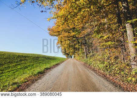 Dirt roat with autumn colors and blue sky and green grass