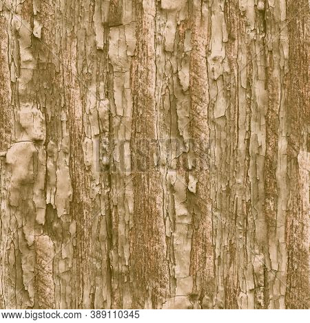 Brown Crackle Paint. Worn Shabby Pattern. Grunge Old Poster. Distress Tree Wallpaper. Crackle Paint.