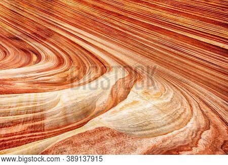 Detailed natural background of petrified dune. The Wave is an awesome vivid swirling ancient sandstone formation in Coyote Buttes North. Arizona, USA