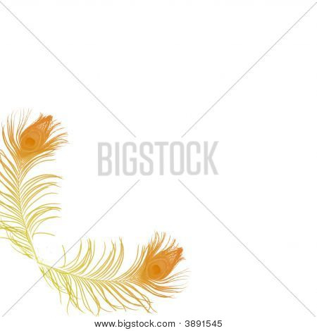 Yellow Feathers Background
