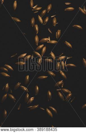 Bird Seeds, Macro Close Up