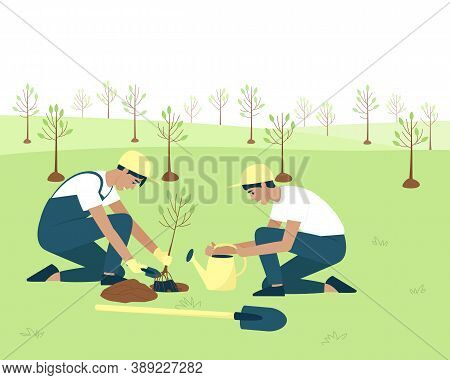 Gardeners Plant Stone Fruit Crops In The Spring. In Spring, Plants Take Root Better, Develop And Sur