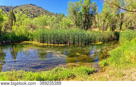 The Verde River Just West Of Stewart Ranch In The Upper Verde River Wildlife Area. This Section Of T