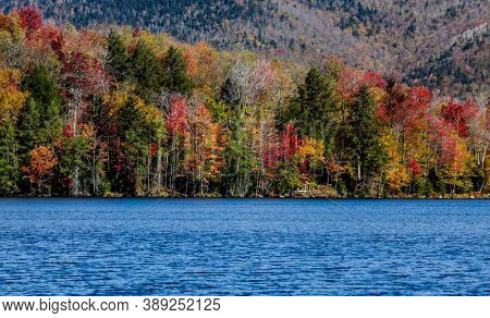 Beautiful autumn colored leaves near water