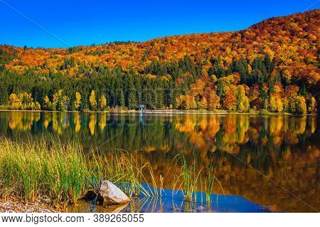 Stunning Autumn Scenery With Colorful Deciduous Trees In The Forest And Fantastic Volcanic Lake. Pop