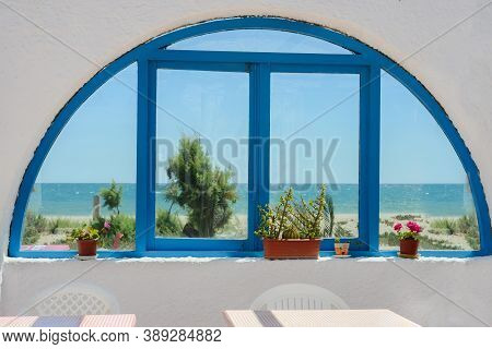 Flowers In Pot In Front Of Blue Window Frame
