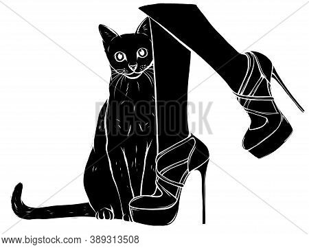 Witches Feet In Striped Socks And Shoes And A Black Cat Black Silhouette