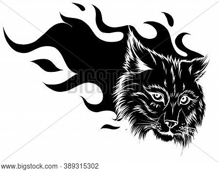 Cartoon Illustration Of The Head Of A Snarling Bobcat Facing Black Silhouette Forwards Baring Its Te