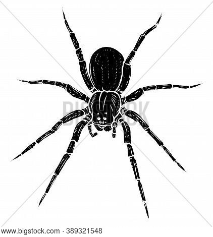 Black Silhouette Spider Steed Crossbow Scary Vector Illustration Art