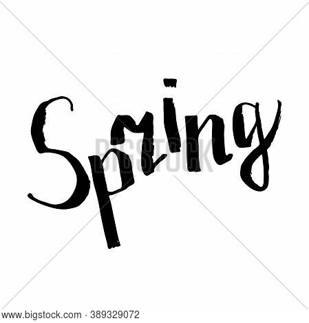 Lettering Spring. Word Spring Isolated On A White Background. Black Hand-drawn Inscription. Calligra