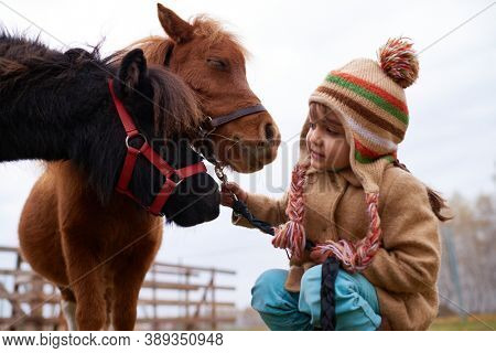 Little Caucasian girl getting animal-assisted therapy with tiny ponies on horse farm