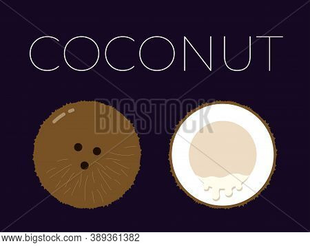 Vector Of Coconut And Sliced Half Of Coconut On Dark Background