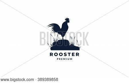 Rooster Or Cock Crows Silhouette Logo Vector Illustration Design