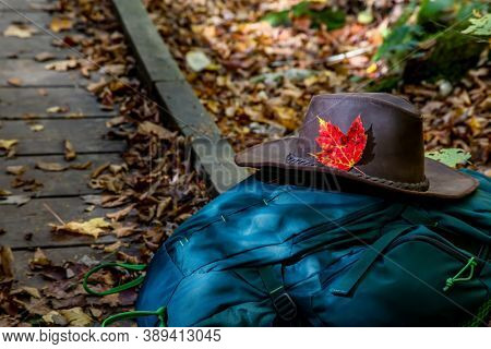 Green ackpack with hat in the forest trail