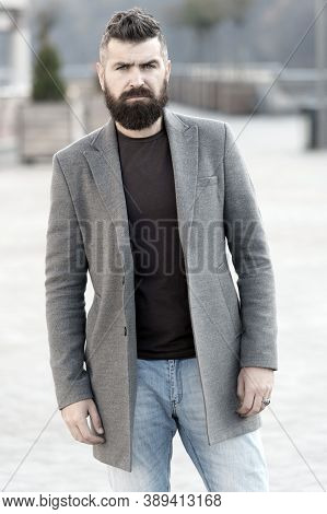 Beard Fashion And Barber Concept. Man Bearded Hipster Stylish Fashionable Coat. Bearded And Cool. Ba
