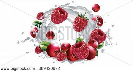 Cranberries And Raspberries And A Splash Of Milk Or Yogurt.