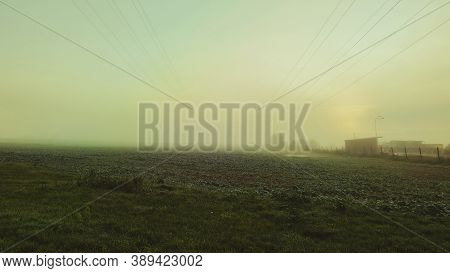 Field In Autumn Fog, Early Autumn Morning. Dense Fog Envelops The Idyllic Landscape. Field Grasses H
