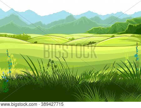 Rural Hills. Scenery. Vector. Pasture Grass For Cows And A Place For A Vegetable Garden And Farm. Me