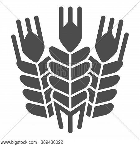Grain Ears Solid Icon, Craft Beer Concept, Wheat Grains Sign On White Background, Bunches With Grain