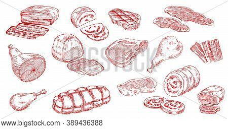 Pork Sausage, Veal Beef And Lamb Steak Sketches. Bacon, Ham And Jamon Leg, Meat Roll, Chicken Or Tur