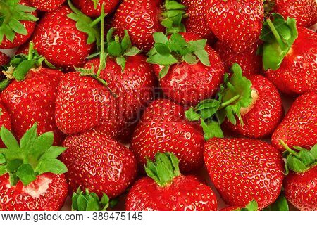 Lots Of Juicy Red Strawberries As A Background. Palatable Ripe Berries. Summer Harvest. Close Up, To