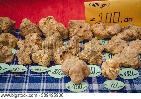 White Truffles (tuber Magnatum Pico) On A Trader Stall Of The Fiera Del Tartufo (truffle Fair) Of Al