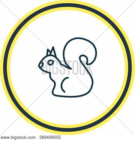 Vector Illustration Of Squirrel Icon Line. Beautiful Zoology Element Also Can Be Used As Chipmunk Ic
