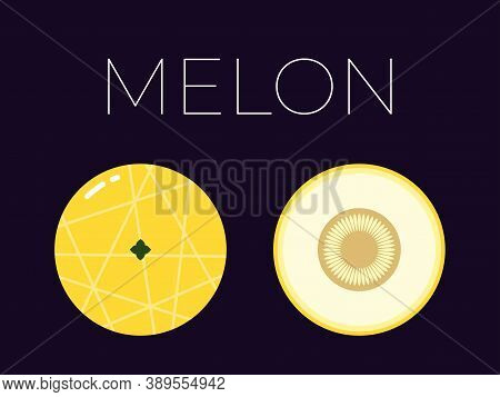 Vector Of Melon And Sliced Half Of Melon On Dark Background