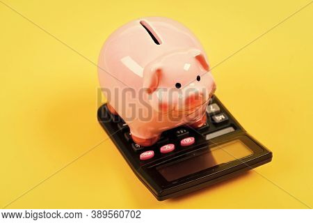 Want To Pay. Income Capital Management. Moneybox With Calculator. Piggy Bank. Planning And Counting