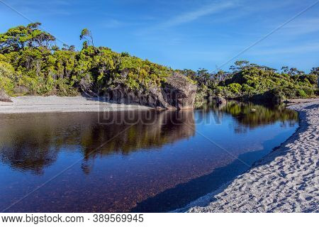 Puddles of ocean water on the shore. Pacific coast at low tide. New Zealand, South Island. Road to Knight's Point Lookout. Picturesque magic reflections of overgrown shores