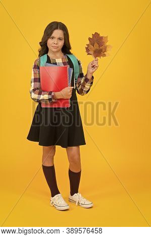 More Knowledge Never Hurt Anybody. Cute Small Girl Hold Books And Autumn Leaves. Adorable Little Chi
