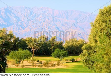 Manicured Lawn,surrounded By Trees And Cacti Gardens With Barren Mountains Beyond Taken At An Oasis