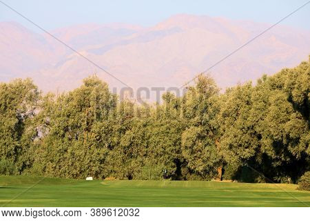 Trees Surrounding A Manicured Lawn With Barren Mountains Beyond Taken At Death Valley In Furnace Cre