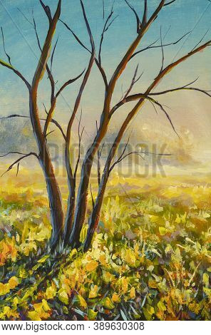 Original Oil Painting Morning Village Landscape Tree Without Leaves On Sunny Field On Canvas. Impast