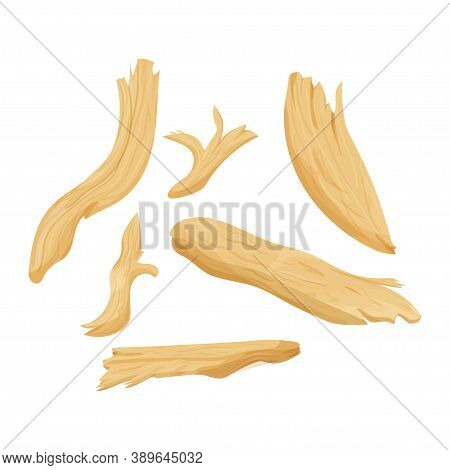 Set Of Pieces Chicken Meat, Chopped, Shredded Detailed Isolated On White Background. Ingredient In P