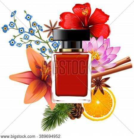 Vector Perfume With Ingredients Isolated On White Background