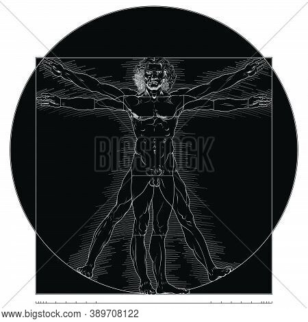 Vector Design Of The Vitruvian Man, Negative Of Leonardo Original Work, All On White Background.
