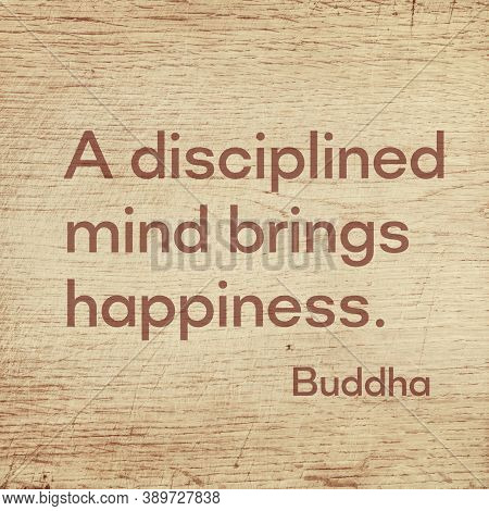 A Disciplined Mind Brings Happiness - Famous Quote Of Gautama Buddha Printed On Grunge Wooden Board