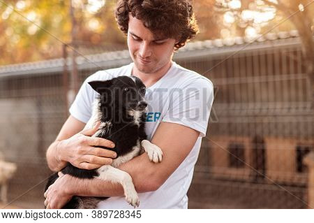 Young Man With Curly Hair Embracing And Caressing Cute Homeless Dog While Working In Animal Shelter