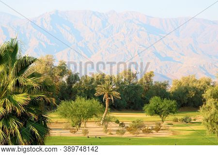 Lush Manicured Lawn Besides A Cacti Garden With Barren Mountains Beyond Taken At Death Valley In Fur