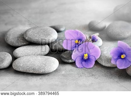 Zen Stones And Exotic Violet Flowers On Grey Background.
